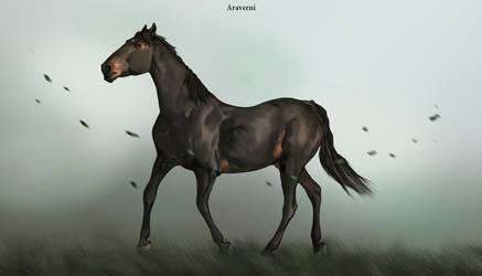 AnimalArtKingdom by Araverni