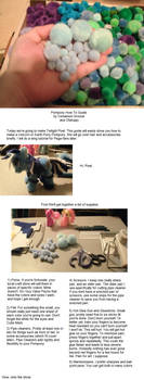 Pompony how-to Startup Page