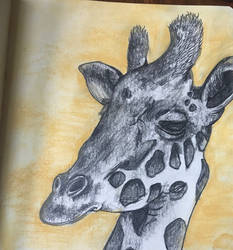 Giraffe Sketch by ArtBeckyCommissions