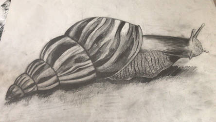 Giant Snail by ArtBeckyCommissions