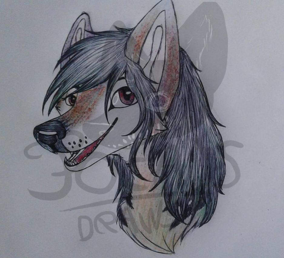 Female Wolf furry 2/2 by Focads