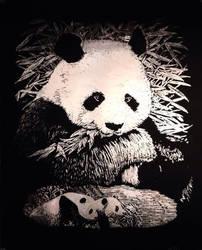 Panda scratchboard :3
