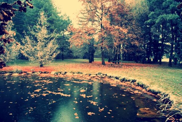 Autumn by KajaaL