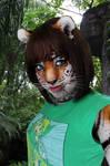 TF Tigress