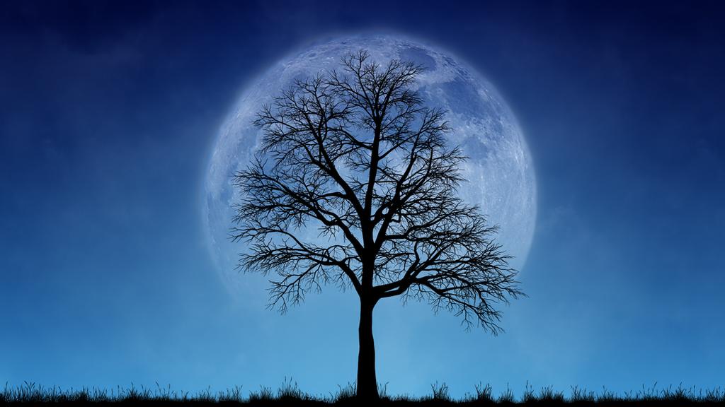 The Moon 4K by Hypnoshot