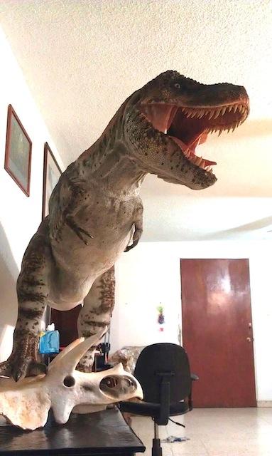 Tyrannosaurus rex 1:5 scale Under view. by GalileoN