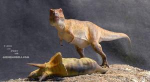 Tyrannosaurus Hunter