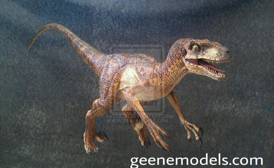 Raptor by GalileoN