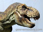 T Rex 1/8 scale 5 feet in length close up