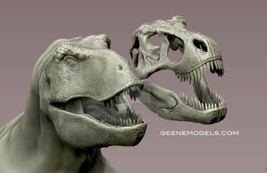 Tyrannosaurus and skull
