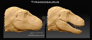 Tyrannosaurus Head.