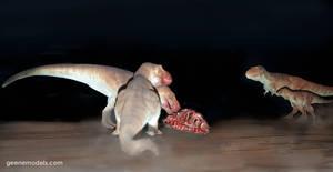 T rex 1:72 scale feeding .