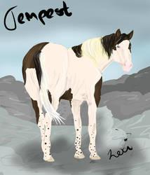 Tempest by Taliren