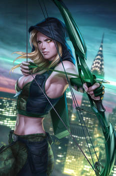 Robyn Hood Wanted 1