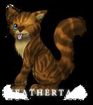 Warriors - Heathertail