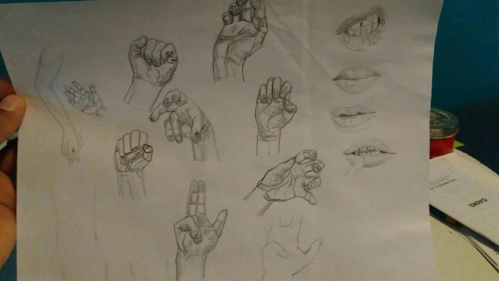 practice  by Perrolobo95