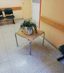 Hospital plant 2 by christophf