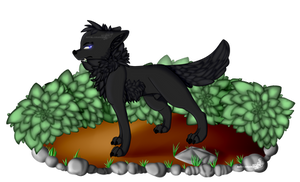 MINE - Black Wolf by Lunamieko