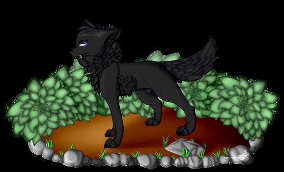 MINE - Black Wolf