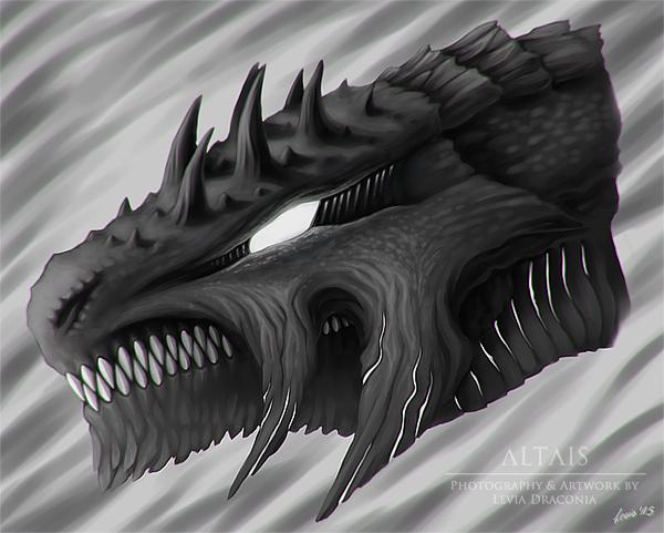 Dragon Head Sketch  04/07/2015 by LeviaDraconia