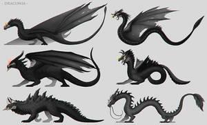 Draconia - Armor Concept