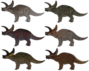 Triceratops Skin Concepts