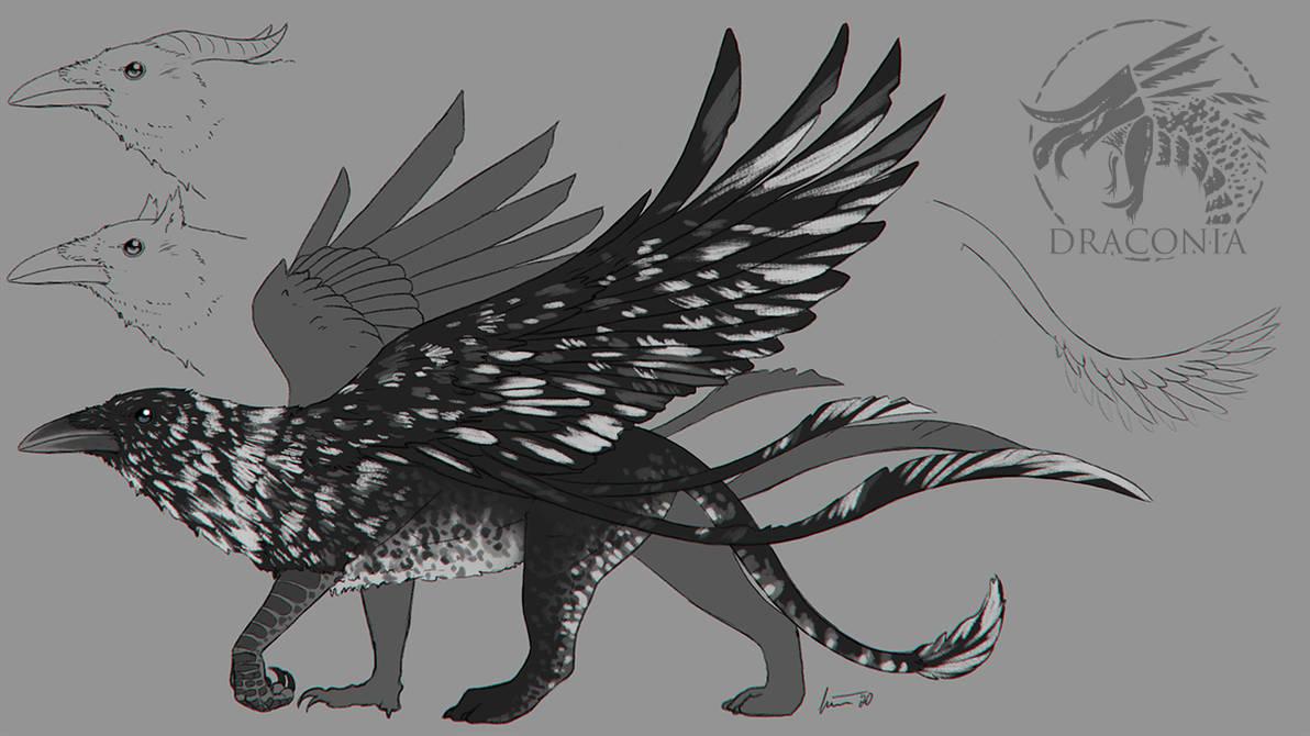 Draconia - Griffin Sketch