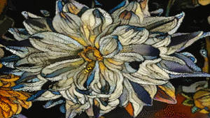 Toon flowers
