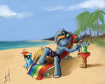 Commission - Swag on the Beach