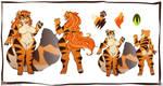 Chub Tigress