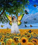 My Sweet Sunflower