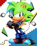 Commission: ZonicTHedgehog