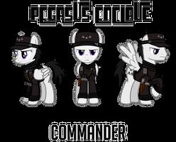 Fallout Mod Concept: Enclave Commander by Brisineo