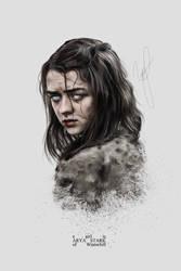 a girl is arya stark by Riotovskaya