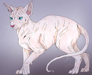 Naked cat by Wohwelii