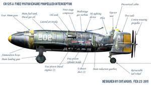 Cu-125 A Descriptive by CUTANGUS