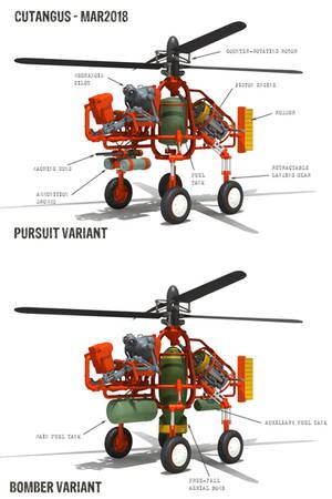 V.T.O.L. vehicle main variants