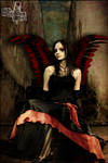 Dark Wings.