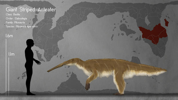 Giant Striped Anteater
