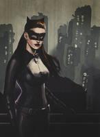 TDKR Catwoman by brianlaborada