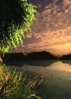 pond stock by anodyne-stock