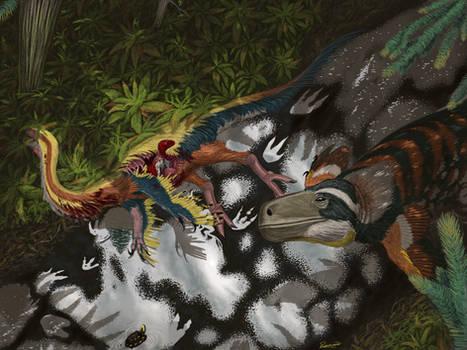 Utahraptor and Falcarius