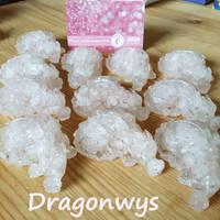 Tickled Pink GemChip Dragons