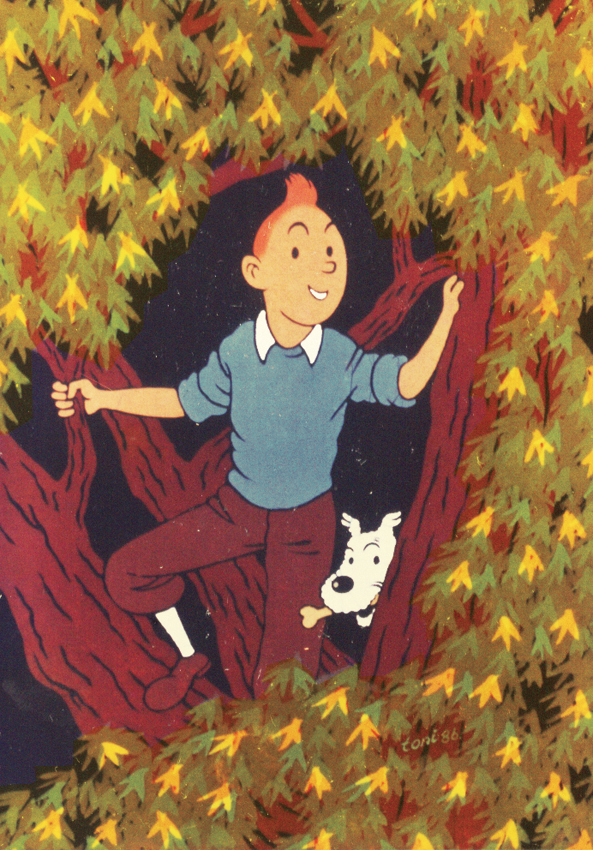 tintin and snowy wallpaper - photo #32