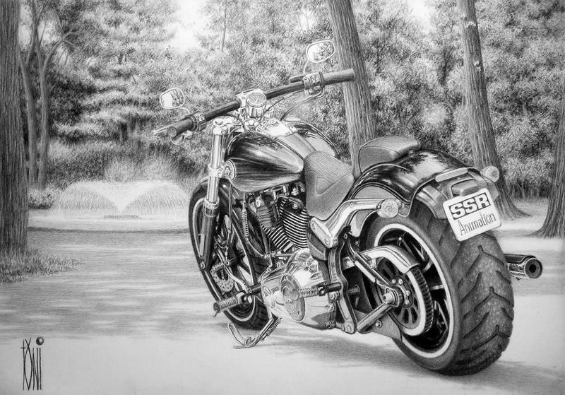 Harley Davidson Softail by toniart57