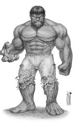 the incridible HULK by toniart57