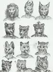 Anthro sketches - Felidae