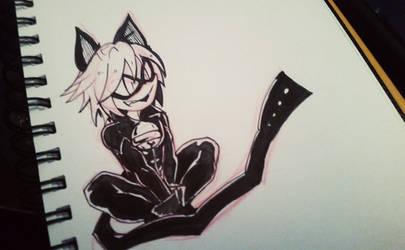 Chat Noir by AgentSkull
