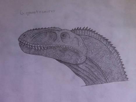 Giganotosaurus (Sketch)