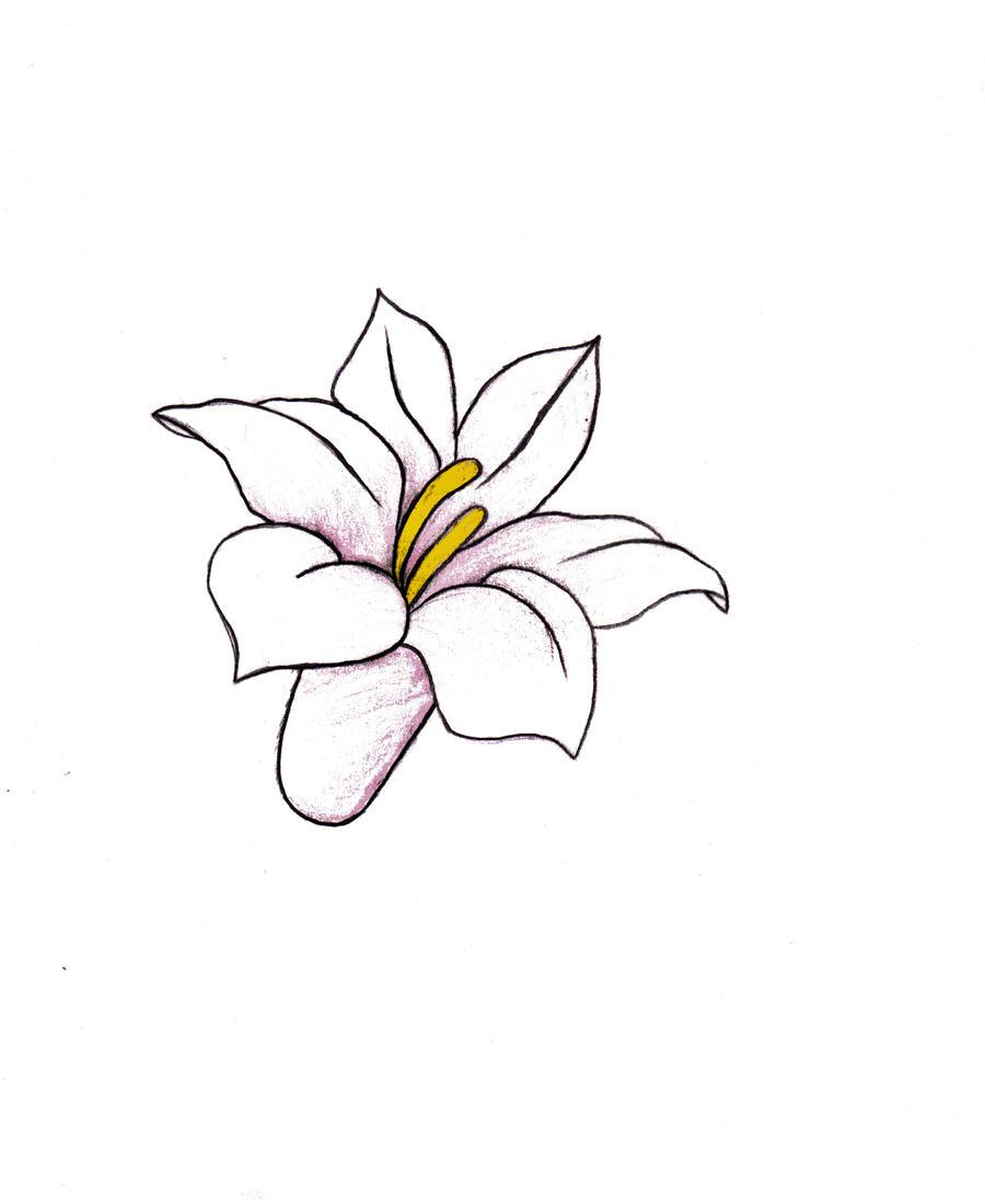 Flower drawing  by alexandraxaccidentalEasy Drawings Of Flowers